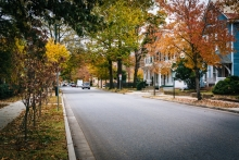 Maryland neighborhood street in autumn