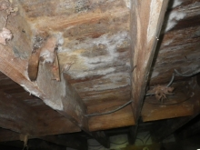 crawl space, encapsulation, total home performance, MD