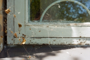 air leaks, air sealing, gaps in home, cob webs in home, spider webs in home, total home performance, easton, md
