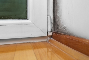 mold and moisture in corner of window and floor in house
