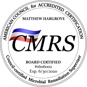 Matt Hargrove of Total Home Performance in Easton, MD is your Council-certified Microbial Remediation Supervisor and local mold remediation expert.