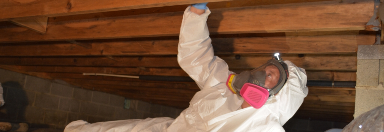 Solutions for your Crawlspace, Total Home Performance, Easton, MD