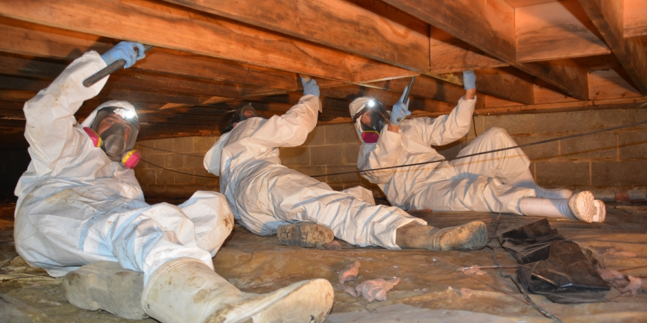 Crawlspace Repair, Total Home Performance, Easton, MD